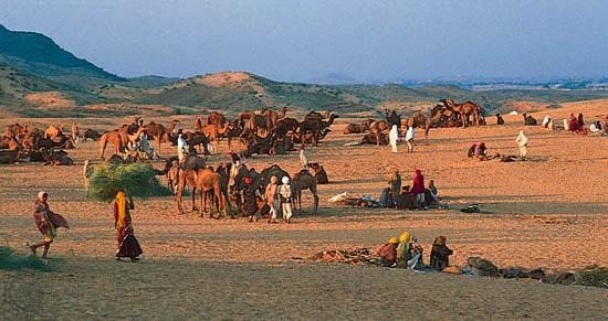 Indian Century - Rajasthan  Indian Century ...